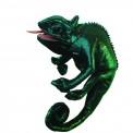 Marionnette : le caméléon