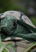 Marionnette : la tortue